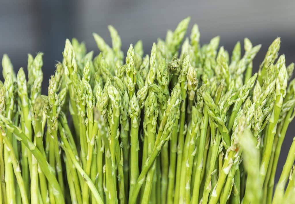 Asparagus, spring delight: how to cook them without errors