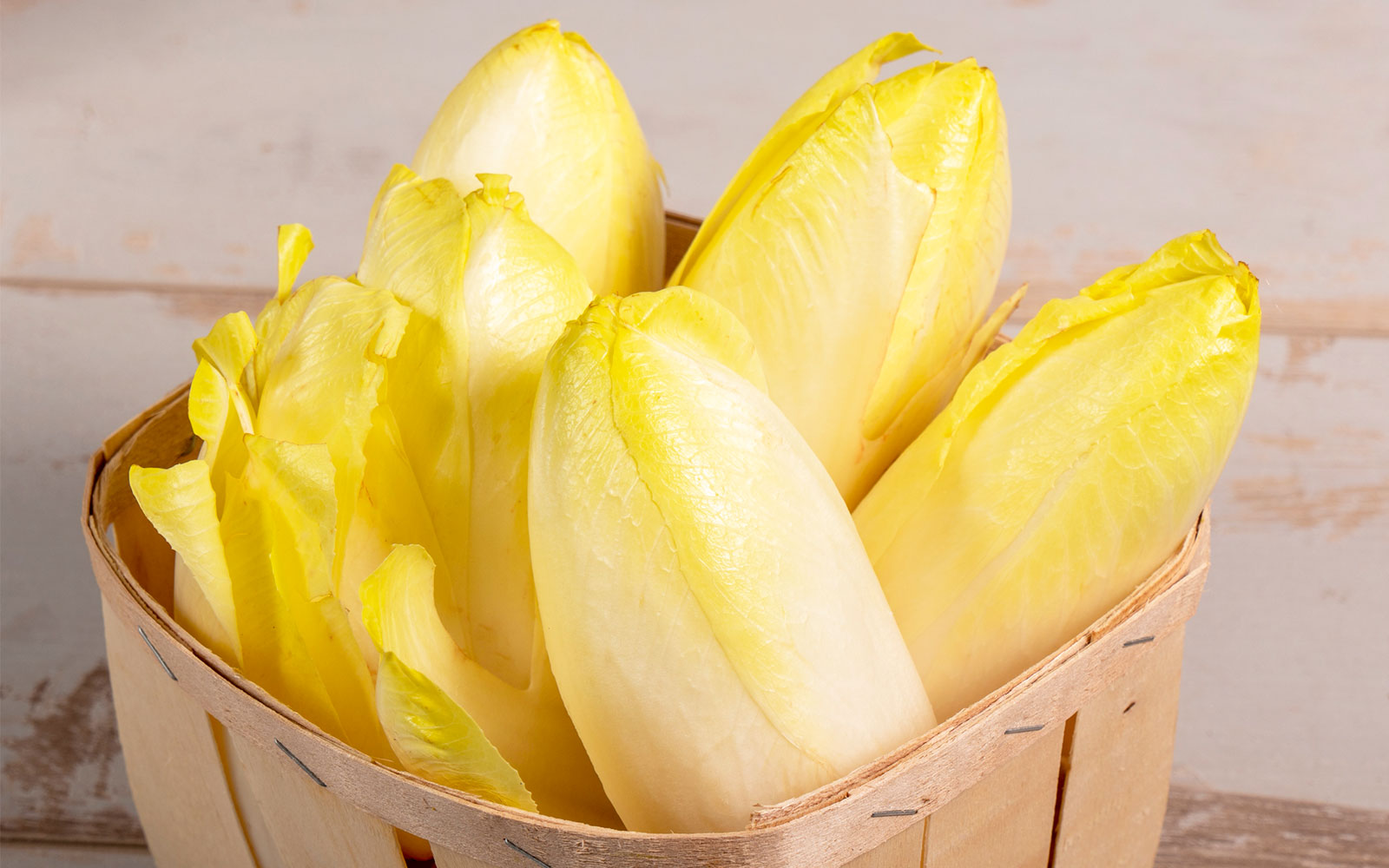 Belgian endive recipes Italian cuisine starters first and second courses side dishes