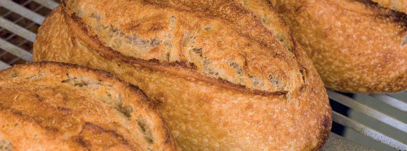 Double dough bread recipe