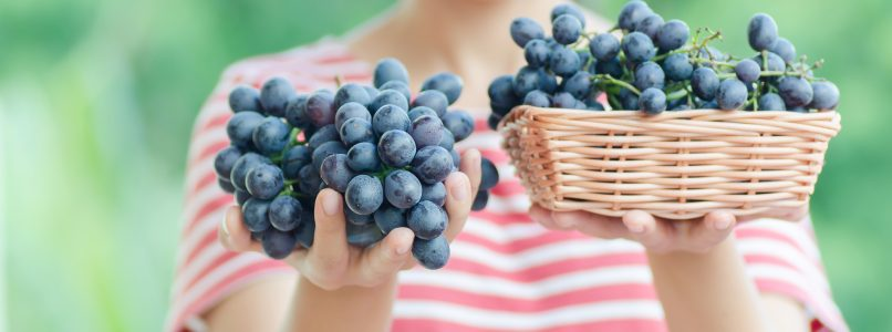 How many calories does the grape contain? - The Italian kitchen