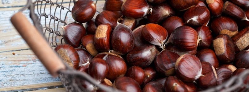 How to cook chestnuts in 10 recipes
