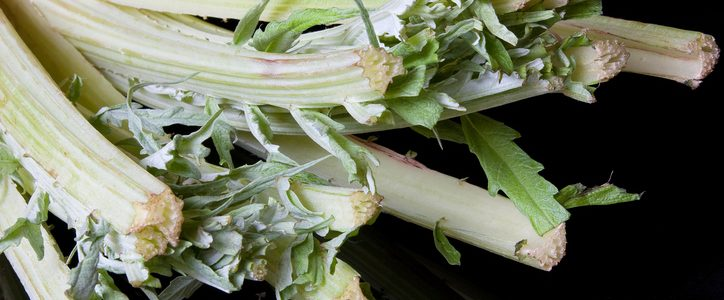 How to cook thistles