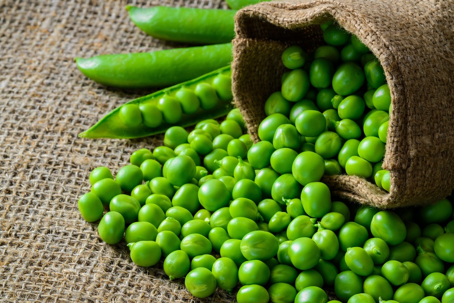 How to use peas? Here are their virtues