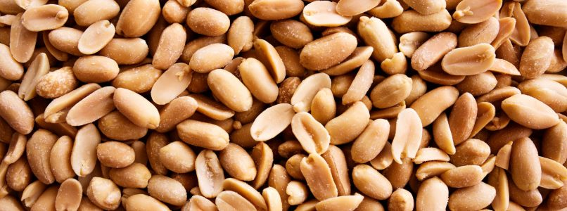 Peanut: male or female? - The Italian kitchen